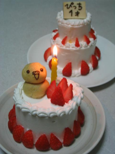 ぴっち1才誕生日。
